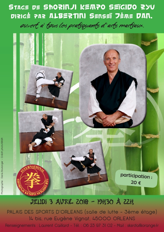 3 avril 2018 stage Shorinji Kempo à Orléans